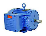 Explosion Proof - Three-Phase - High Efficiency